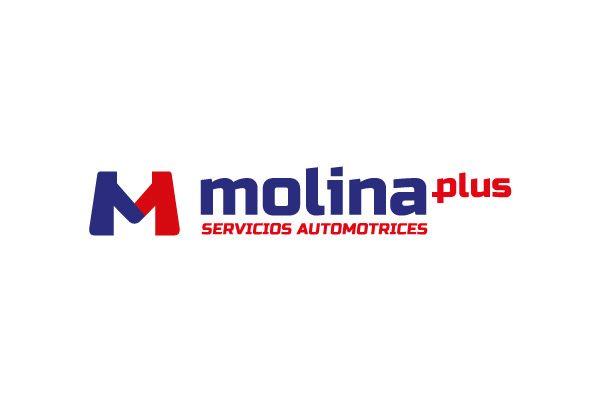 molina-plus-01-logotipos-en-durango-identidad